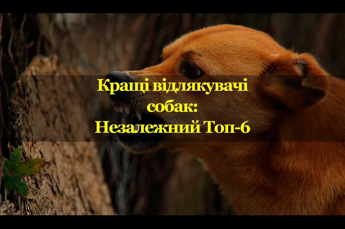 Обложка-материала_Vidlyakuvachi_Sobak