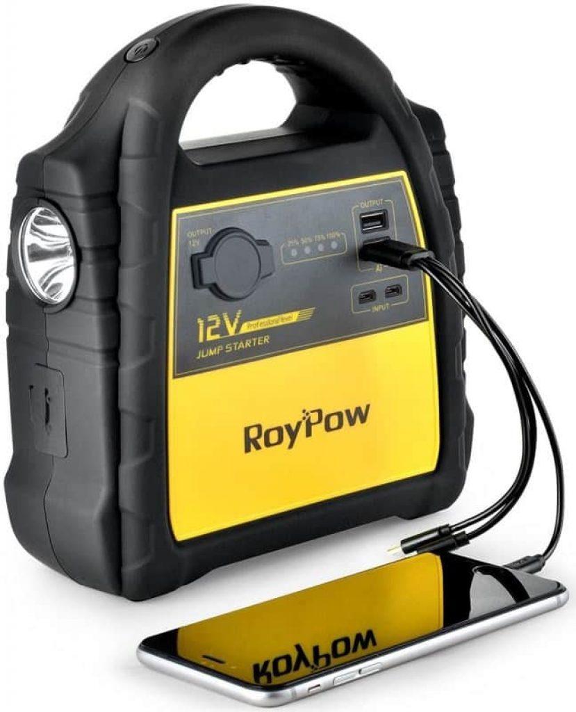 RoyPow J301-фото