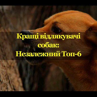Кращі відлякувачі собак: Незалежний Топ-6